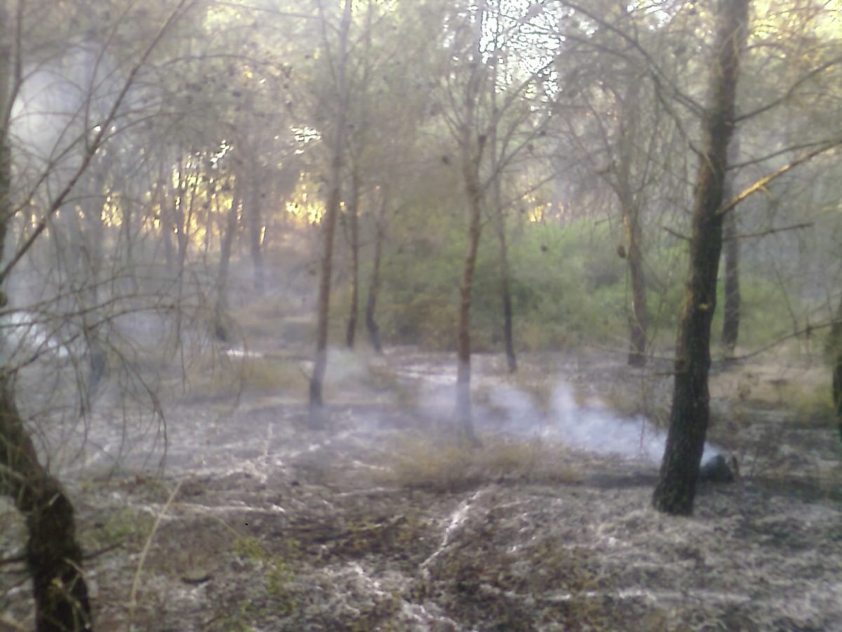 Anno 2009 – Incendio Patemisco