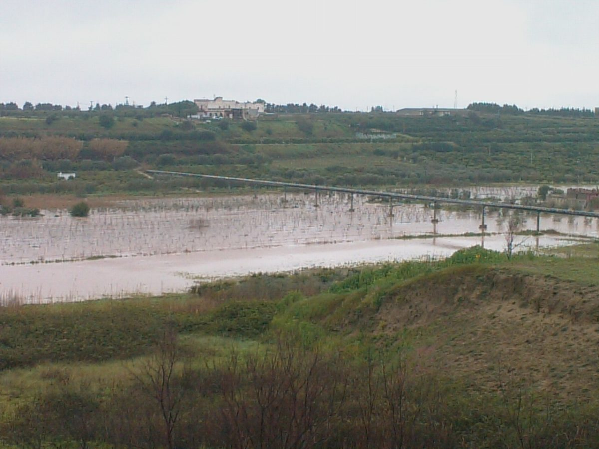 Anno 2010 – Nubifragio Palagiano